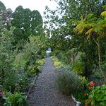 The kitchen garden and orchard
