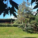 Foto de Hotel Restaurant El Moli