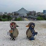 ホテル屋上からの眺め(ペンギンと一緒に)