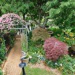 Gardenalia Open Garden