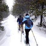 Snowshoeing in Bozeman