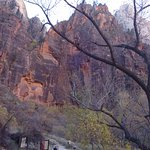 At Weeping Rock stop, which provides access to Observation Point and Hidden Canyon hikes.