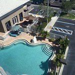 Pool at the Homewood suites FGCU