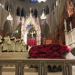 Foto di Cathedral Basilica of the Sacred Heart
