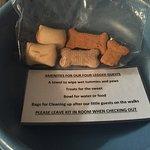 Doggy travel treats in room, R & R Inn Motels, n 621 12th Street, Bassano, Alberta