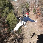 Zipping free above the trees