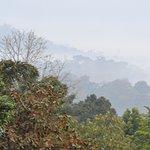 Hills veiled in the morning mist