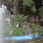 Foto de Parque Cubbon