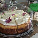 Mat's Baked Lemon Cheesecake