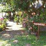 Foto de Vanna Hill Resort
