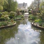 Reg's Garden 3