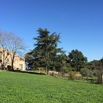 Foto di Azienda Agrituristica Bio Le Macchie Alte