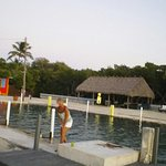 me on dock taking photo in towards tiki hut. where continental breakfast is seved. 8am-10am