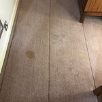 Dirty stained carpet, worn furnitures.