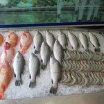 Super display of fish and shrimp