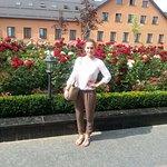 Пышные розовые сады