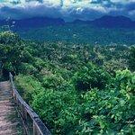 Tet Paul Nature Trail Photo
