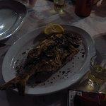 sargos grilled
