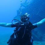 Coconut Tree Divers Foto