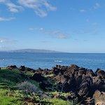 Coastal Nature Trail Foto