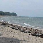 Hamilton Inn Select - Beachfront Foto