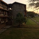 Lobo Wildlife Lodge Foto