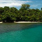 Paradisíacas playas donde la selva siempre verde se refresca en un mar turquesa