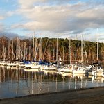 The marina at Joe Wheeler State Park