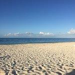 1bdrm lux ocean front