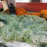 Dia de los Muertos Cut Flowers on the Street in Front