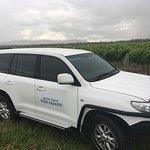 Hunter Valley Wine Safaris Tours
