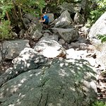 Yes it is a rocky trail.