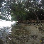 Photo of Booby Cay Island