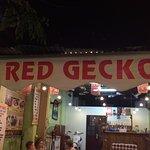 Red Gecko Foto