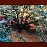 Foto de Best Western Plus Orchid Hotel & Suites