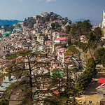 shimla city view top of hill