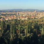 divine view of florence from our suite
