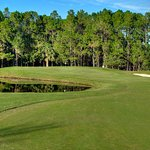 Cypress Head Golf Club Photo