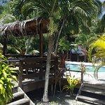 Photo of Rarotonga Backpackers