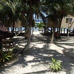 Photo de Rarotonga Backpackers