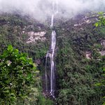 "HIKING TOUR TO ""LA CHORRERA""  WATERFALL"