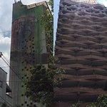Gigantic graffiti giraffe on the building side