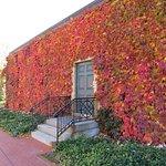 George Eastman Museum Foto