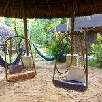 Photo de Arajuno Jungle Lodge