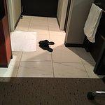 Photo of Vista Hotel Sapporo Nakajima-koen