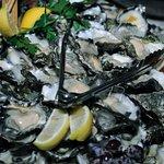 Local fat Sydney Rock Oysters