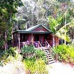 Lake Weyba Cottages Noosa Foto