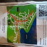 P_20161117_070655_large.jpg