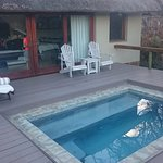 Family suite comes with a plunge pool. Don't forget to close the door tho', the monkeys love vis