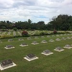 Photo of part of cemetary